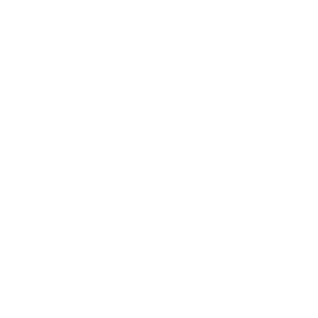 Ceos New Media